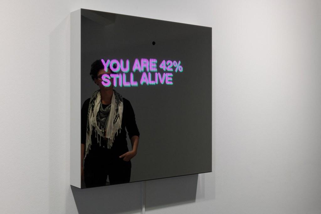 Sebastian Schmieg, Decisive Mirror